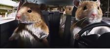 Kia Soul: Hamsters. Хомяки рулят.