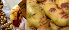 Картофельные портреты Ginou Choueiri.