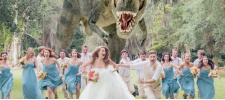 Quinn Miller: тиранозавр на свадьбе.