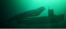 Specsavers: проблемы с подводной лодкой.